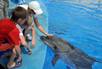 Комфортный отдых с детьми в Санкт-Петербурге