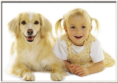 Какую собаку выбрать для ребенка?