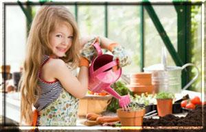 Учим детей ухаживать за растениями